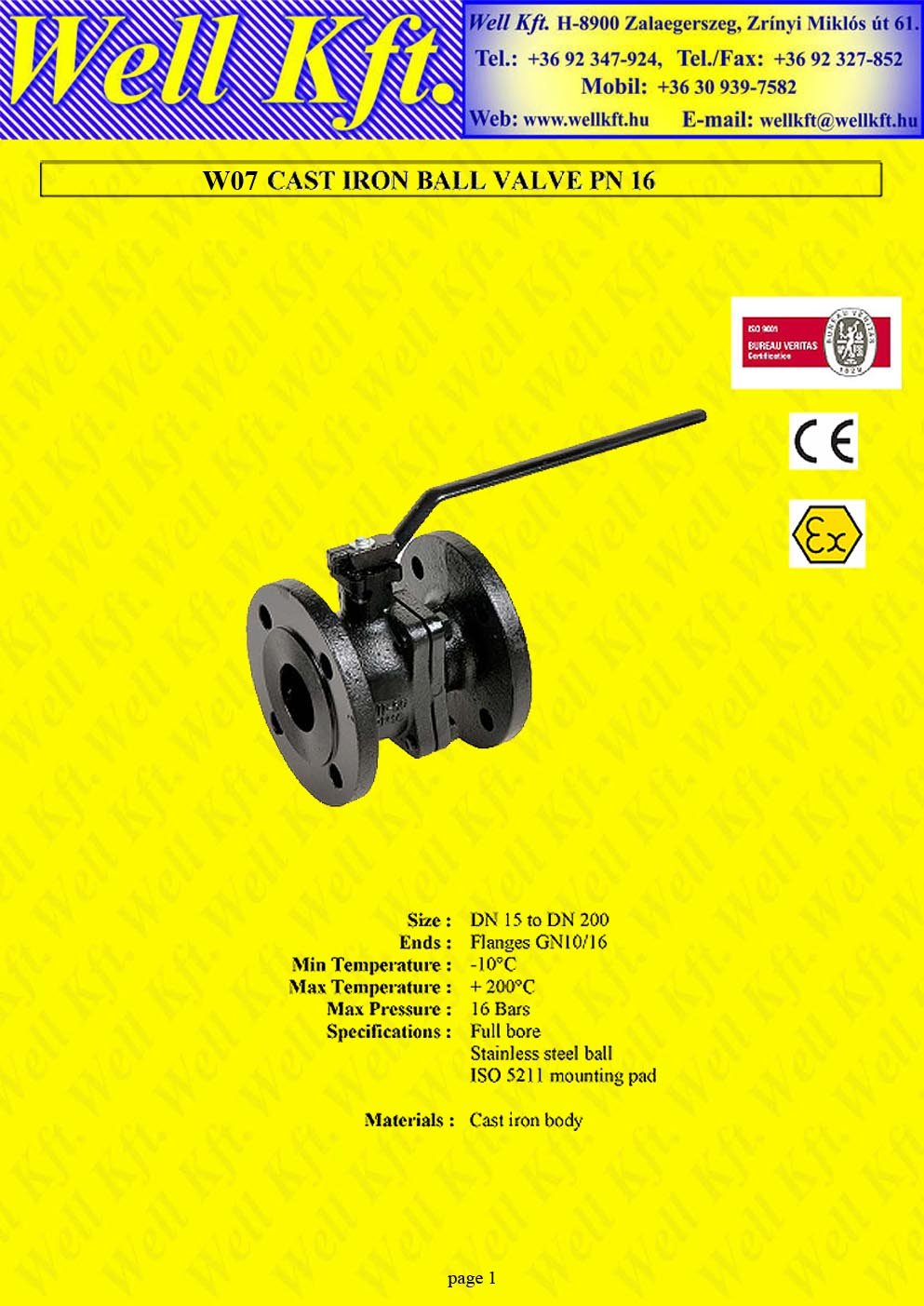 Ball valve 2 pieces cast iron ISO pad PN 16  (1.)