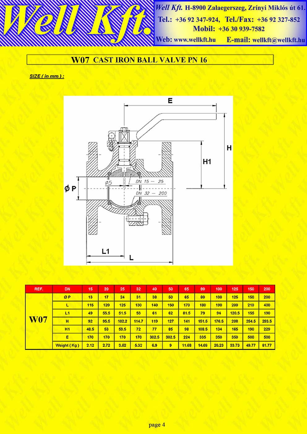 Ball valve 2 pieces cast iron ISO pad PN 16  (4.)