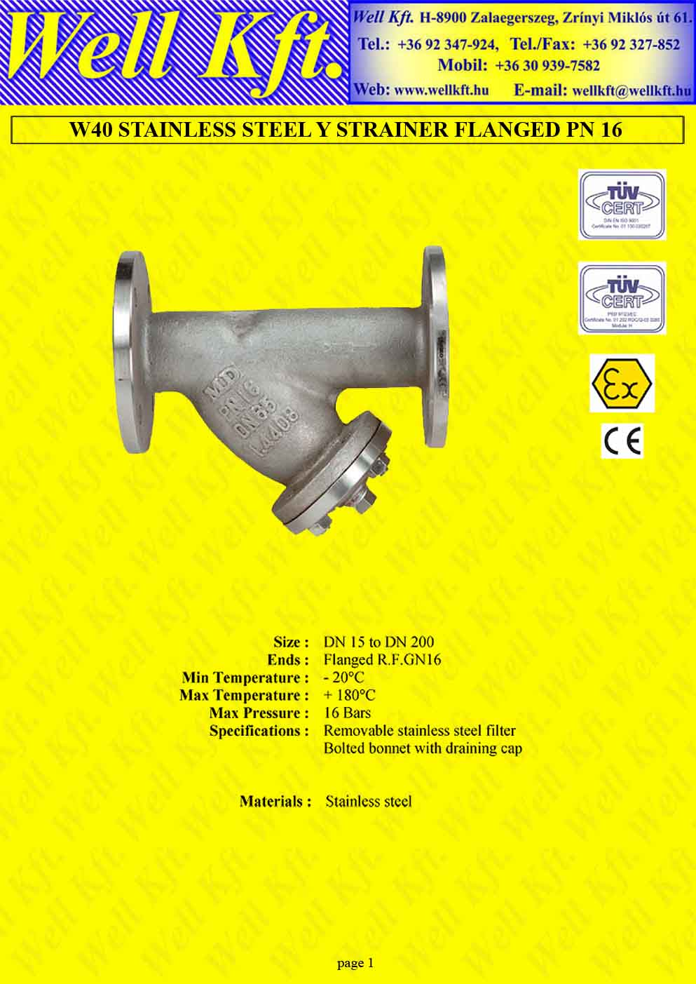 Y strainer stainless steel flanged PN 16  (1.)