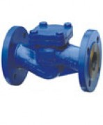 Check valve carbon steel