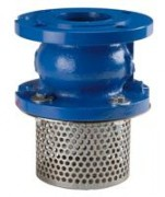 Check valve with strainer