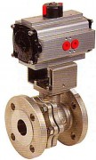 Split-body stainless steel ball valve with pneumatic actuator WPG753EX