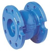 Flanged Check valve 1